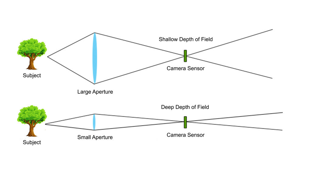 Aperture And Depth Of Field Fotovoyage